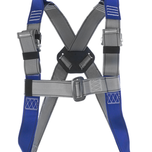 CS Rescue Harness